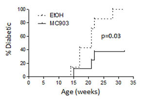 Long-term topical MC903 treatment decreases the incidence of diabetes.